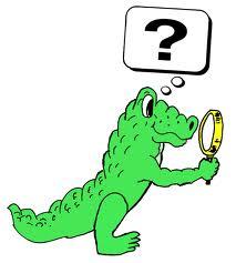 Aligator Inquiry